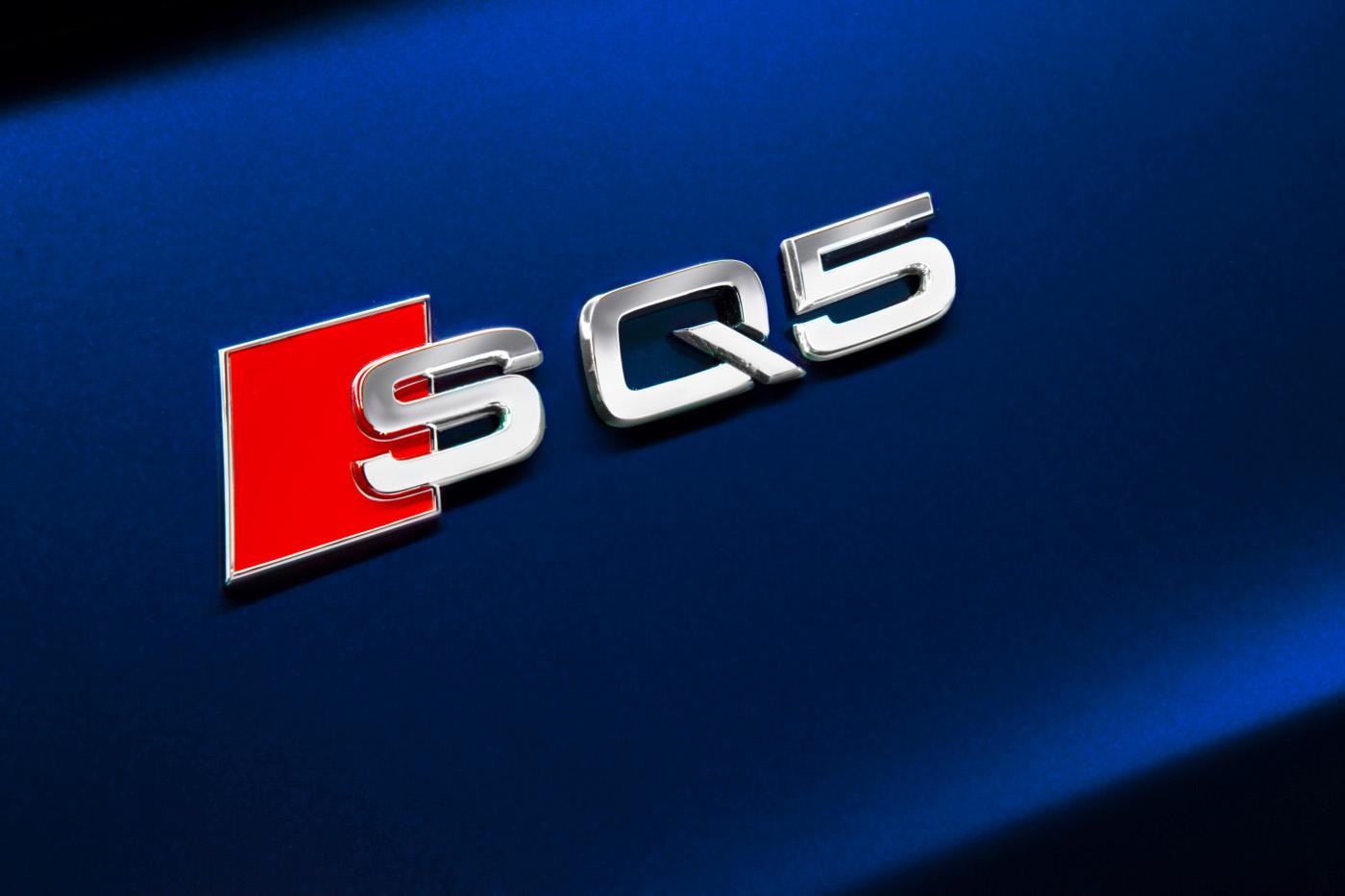 6-audi-sq5-details-exterieur.jpg