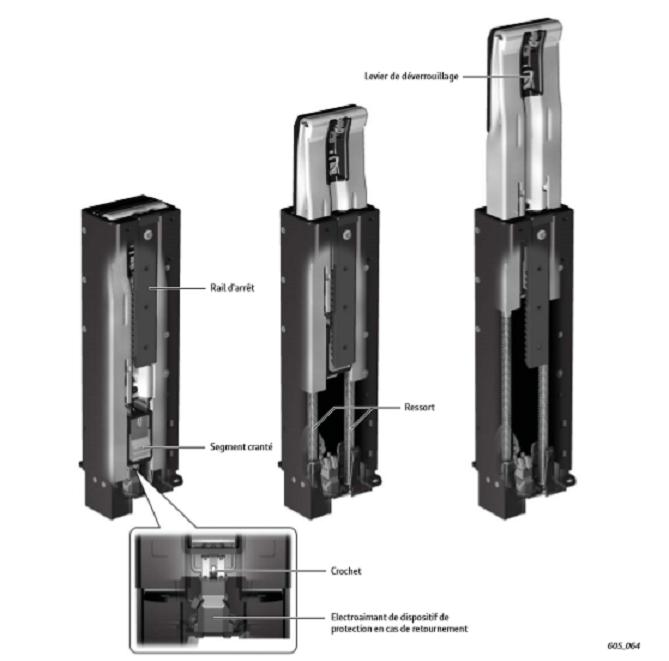 Fonctionnement-systeme-protection-en-cas-de-retournement-Audi.png