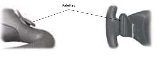 audi-rs6-53-volant-palettes-tiptronic.jpg