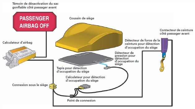 complement-systeme-protection.jpg
