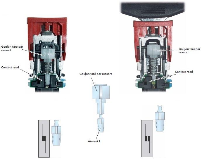 contact-ceinture-2.jpg