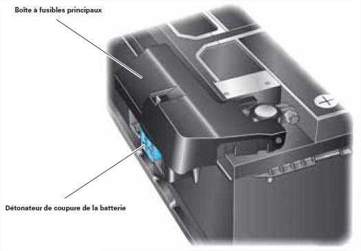 detonateur-coupure-batterie-2.jpg