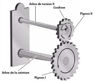 pignons-2.jpg