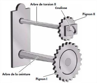 pignons-3.jpg